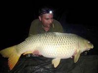 Fish_arena_horgaszto_es_a_horse_baits_bojli